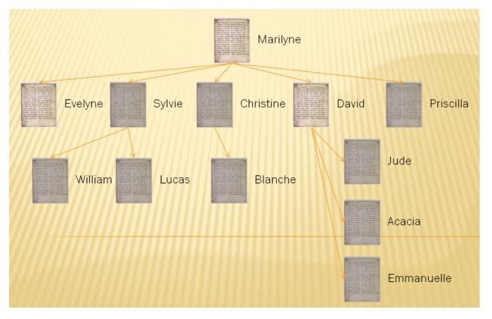 La fiabilité des manuscrits du Nouveau Testament3